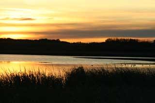 Saskatchewan Canada Goose Hunts